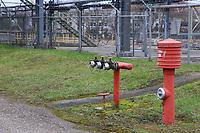 Mannheim. 06.03.17   BILD- ID 065  <br /> Friesenheimer Insel. BASF Anlage. Produktion im Werksteil Friesenheimer Insel. <br /> In den Produktionsanlagen der BASF werden Rohstoffe durch chemische Reaktionen in<br /> andere Stoffe umgewandelt. Dies geschieht bei den Anlagen im Werksteil Friesenheimer<br /> Insel im st&auml;ndigen Durchlauf (kontinuierliche Produktion). Dabei laufen die Reaktionen<br /> unter hohem Druck und erh&ouml;hter Temperatur ab. Einsatzstoffe und erzeugte Stoffe werden<br /> zwischengelagert und per Rohrleitung, Tankschiff, Kesselwagen und Tankzug bezogen oder abtransportiert. <br /> - &Ouml;lhafen<br /> Bild: Markus Prosswitz 06MAR17 / masterpress (Bild ist honorarpflichtig - No Model Release!)