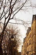 17th century houses along the Quai de Bourbon on the Il St Louis in early morning light. Paris, France, Europe