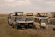 Tourist on a safari, looking at the wild life at Serengeti National Park is a region of grasslands and woodlands in Tanzania
