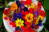 Flores comestiveis | Edible flowers