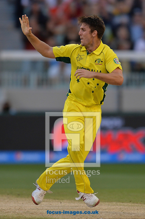 Mitchell Marsh of Australia celebrates during the 2015 ICC Cricket World Cup match at Melbourne Cricket Ground, Melbourne<br /> Picture by Frank Khamees/Focus Images Ltd +61 431 119 134<br /> 14/02/2015