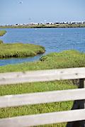 Bolsa Chica Wetlands Reserve