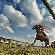 Lingfield 27th March 2013