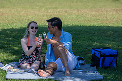 © Licensed to London News Pictures. 20/05/2020. London, UK. A couple enjoy the sunshine with a glass of bubbly in Richmond Park in South West London as weather experts predict the warmest day of the Year with a high of 27c. Last week the Government eased the law on lockdown to let people spend more time outside to enjoy sunbathing and picnicking. Photo credit: Alex Lentati/LNP
