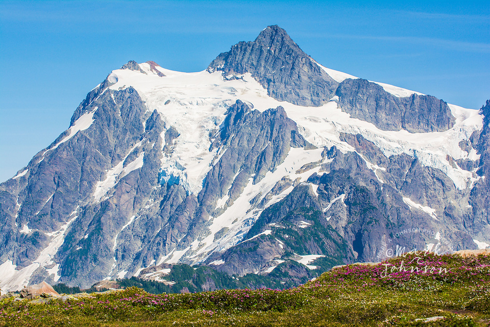 Mount Shuksan & wildflowers, Mt. Baker-Snoqualmie National Forest, Cascade Range, Washington, USA