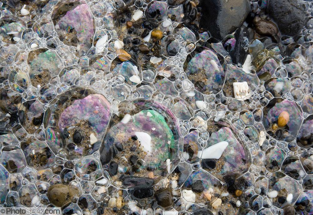 Shiny iridescent sea foam bubbles, Oceanside beach, Oregon, USA