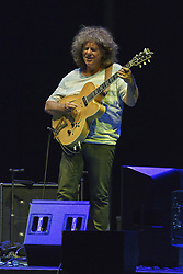 July 2, 2018 - Madrid, Spain - American jazz guitarist Pat Metheny in concert during Botanical Nights Festival on July 2, 2018 in Madrid, Spain  (Credit Image: © Oscar Gonzalez/NurPhoto via ZUMA Press)