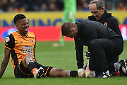 Hull City striker Abel Hernandez (9) receives attention for an injury during the Sky Bet Championship match between Hull City and Leeds United at the KC Stadium, Kingston upon Hull, England on 23 April 2016. Photo by Ian Lyall.