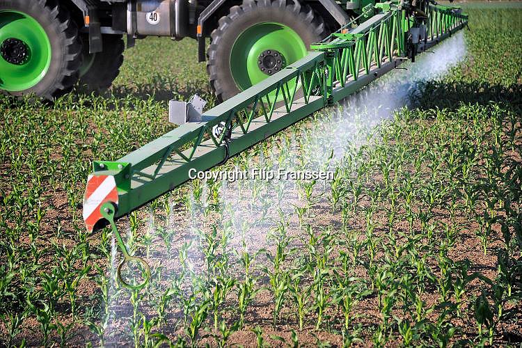 Nederland, Ooijpolder, 25-5-2016Een loonbedrijf bespuit jonge maisplantjes met een bestrijdingsmiddel tegen ziekten,onkruid of schimmels.Foto: Flip Franssen/Hollandse Hoogte