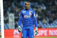 VINCENT ENYEAMA - 07.02.2015 - Montpellier / Lille - 24eme journee de Ligue 1<br /> Photo : Andre Delon / Icon Sport