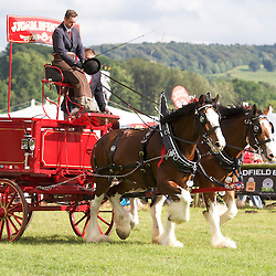 Bakewell Show 2016  Pairs Turnouts
