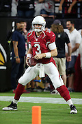Arizona Cardinals quarterback Carson Palmer (3) warms up before the 2016 NFL preseason football game against the Oakland Raiders on Friday, Aug. 12, 2016 in Glendale, Ariz. The Raiders won the game 31-10. (©Paul Anthony Spinelli)