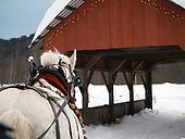 Stowe in Winter