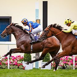 Idaho (S. Heffernan) wins The Hardwicke Stakes (Gr.2), Royal Ascot 24/06/2017, photo: Zuzanna Lupa / Racingfotos.com