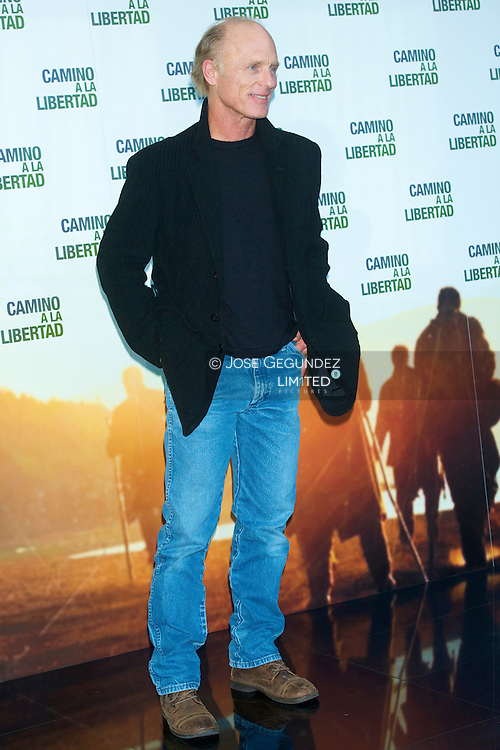 US Actor Ed Harris attends the photocall of 'The way back' at Eurostars Hotel in Madrid