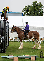 Mairi Ralston from Cambeltown chats to builder Phil Courtney from Rosewell as she takes 7 year-old Clydesdale Daisy out for a final excecise during final preparations for this years Royal Highland Show at Ingliston near Edinburgh.<br /> <br /> &copy; Dave Johnston/ EEm