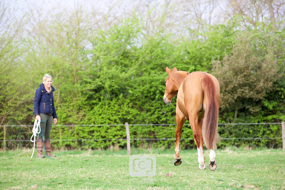 Holly and Becks, April 2017