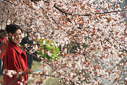 People visit the Huancheng Park in Hefei, capital of east China's Anhui Province, March 13, 2016. Spring scenery attracts visitors as the temperature climbs up across China. EXPA Pictures © 2016, PhotoCredit: EXPA/ Photoshot/ Yang Xiaoyuan<br /> <br /> *****ATTENTION - for AUT, SLO, CRO, SRB, BIH, MAZ, SUI only*****