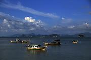 Longtail boats anchored off the coast of Koh Yao Yai, Phang Nga, Thailand.