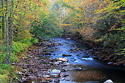 Autumn colors along the Oconaluftee River, located in Great Smoky Mountains National Park, North Carolina