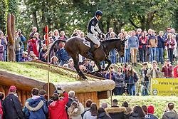Fox-Pitt William, GBR, Grafennacht<br /> Mondial du Lion - Le Lion d'Angers 2019<br /> © Hippo Foto - Stefan Lafrentz