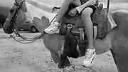 Terra de Elton Gomes Barbosa na comunidade rural Curral Velho no munic&iacute;pio de Porteirinha , Minas Gerais.  Elton Gomes Barbosa &eacute; presidente do Sindicato dos Trabalhadores Rurais de Porteirinha<br /> Arado para plantar sorgo forrageiro para alimenta&ccedil;&atilde;o do gado.