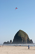 Haystack Rock - a dedicated, protected Marine Garden - rises 235 feet out of the sand and the sea at the low tide line in Cannon Beach Oregon. Haystack Rock and the area around it are abundant with sea life. Care must be taken to avoid trampling this delicate life. The Rock is also home to many birds, including tufted puffins, gulls, and cormorants. Volunteer interpreters and protectors of the Rock and the life that it supports are on the beach during morning low tides during the summer.