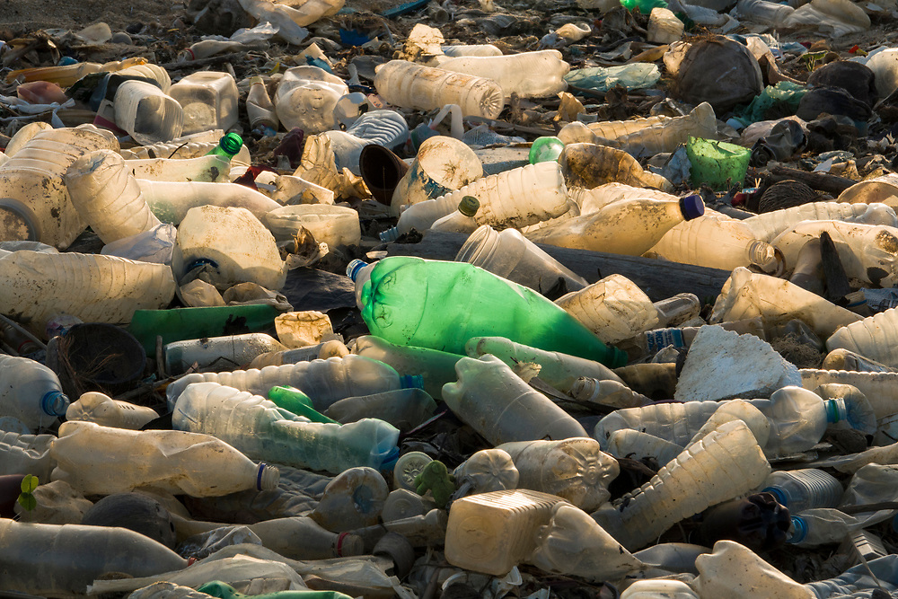 Single use plastic bottles polluting a beach in Negombo, Sri Lanka