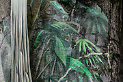 Detail of fresco at the entrance to the Galerie d'Hivers (Winter Gallery), Parc Zoologique de Paris, or Zoo de Vincennes, (Zoological Gardens of Paris, also known as Vincennes Zoo), 1934, by Charles Letrosne, 12th arrondissement, Paris, France, pictured on November 19, 2010, in the afternoon. In November 2008 the 15 hectare Zoo, part of the Museum National d'Histoire Naturelle (National Museum of Natural History) closed its doors to the public and renovation works will start in September 2011. The Zoo is scheduled to re-open in April 2014. Picture by Manuel Cohen.