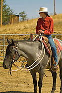 Montana cowgirl and horse trainer Elizabeth Parker prepares blue roan stallion Quarter Horse for Leachman Hairpin Cavvy horse sale, southeast of Billings Montana