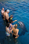 Visitors with dolphin and trainer; Dolphin Encounter program at Dolphin Academy, Sea Aquarium Curacao, Curacao, Netherlands Antilles.