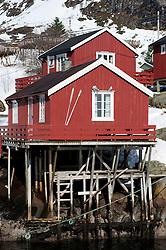 Traditional red wooden Rorbu fishermen`s huts in village of Å on Moskenesoya Island in Lofoten Islands in Norway