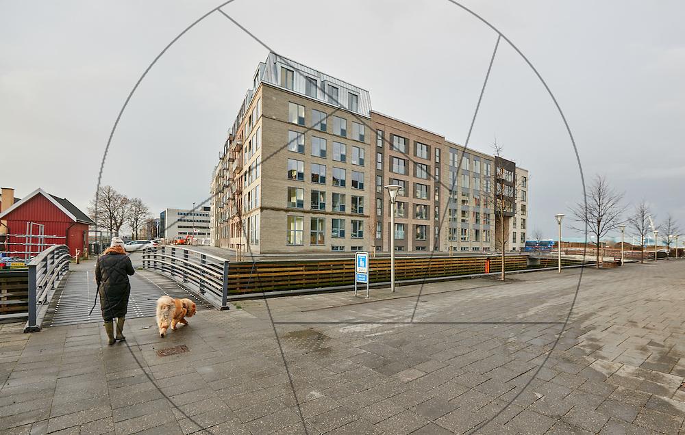 Poppelholm, Sydhavn, Danica, nybyg, havnekaj, facader, eksteriør, mole, havneudsigt, facader