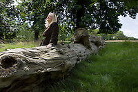 Woman Sitting on a Dead Tree