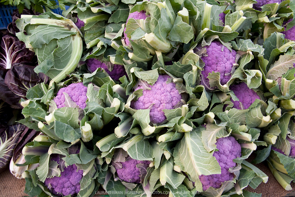 Purple of Sicily cauliflower (Cavolfiore di Sicilia Violetto) at a farmers market