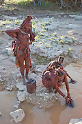 Viahondjera fetches water from a shallow, muddy river near her father's village in northwestern Namibia.  (Viahondjera Musutua is featured in the book What I Eat; Around World in 80 Diets.) Like most traditional Himba women, she covers herself from head to toe with an ochre powder, cow butter blend.