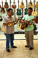 Guitar Players at Alegre Showroom, Cebu -  Guitars have been made in Cebu since the Spanish period mainly as a areplacement for organs for church music until organs were later imported and locally produced. Yet guitars developed as a local industry only in the present century, receiving support from the government's promotion of local cottage industries in the postwar period. In Mactan the craft of guitar making passes from generation to generation and the industry involves certain families, the most prominent is the Alegre family whose name has become a well-known names of Mactan or Cebu guitars.