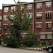 The day after Hurricane Sandy in, Williamsburg, Brooklyn- New York City