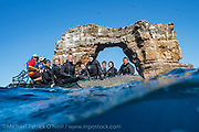 Darwin's Arch, gateway to some of the most electrifying, jaw-dropping diving in the planet. Darwin's Island, Galapagos, Ecuador, is home to enormous schools of sharks, pelagics and other large marine sea life.