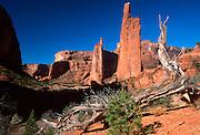 ARIZONA, CANYON DE CHELLY 'Spider Rock', Navajo Reservation