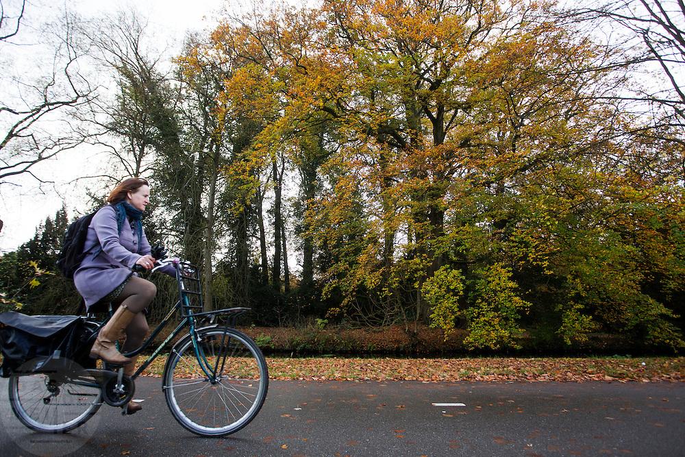 Bij De Bilt fietst een vrouw over het fietspad tijdens het mooie herfstweer.<br /> <br /> Near De Bilt a woman cycles on the bike lane.
