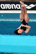 2013 - Bolzano 19° Fina diving GP