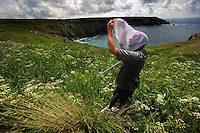 Picture By Jim Wileman  10/06/2009 The National Trust property at Lower Predannack Farm, The Lizard, Cornwall. Its 30 years since the first National Trust eco survey, which was taken at Predannack. Pete Brash, Invertibrate Ecologist collecting insects with a net.