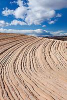 Curving layers of slickrock, Vermilion Cliffs Wilderness Utah