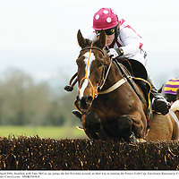 16 April 2006; Justified, with Tony McCoy up, jumps the last first time around, on their way to winning the Powers Gold Cup. Fairyhouse Racecourse, Co. Meath. Picture credit: Ciara Lyster / SPORTSFILE