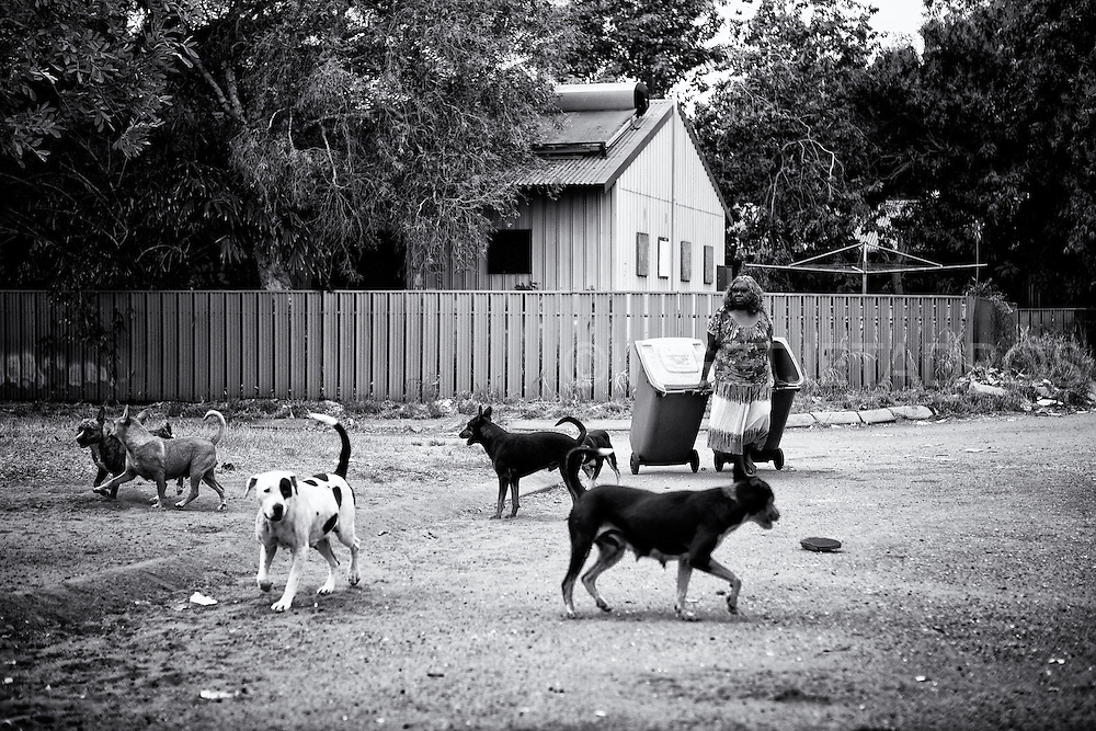 "Every Friday morning Patricia brings the rubbish bins back to her house in Kennedy Hill while Hooktail, Windy, Patch, Blacky, Bluey and Cojack accompany her. Patricia's partner Sandy goes away at times, ""The house gets too many visitors and Patricia is well protected from any humbug,"" her partner Sandy Isaac says. Aboriginal people in contemporary society own dogs for a variety of reasons for companion, protection, spiritual protector, hunter and a source of warmth. Broome, Western Australia. ©Ingetje Tadros/Diimex"
