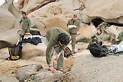 Giuseppe Sotgiu, Dr. Trent Garner, Stefano Bovero (von links nach rechts) und Marco Favelli (im Vordergrund)vom englisch-italienischen Forscherteam arbeiten in der Felslandschaft an der Nordspitze Sardiniens. In den Felstümpeln werden Kaulquappen des Sardischen Scheibenzünglers (Discoglossus sardus) gefangen. Marco Favelli (im Vordergrund misst die Wassertemperatur in einem Felstümpel.