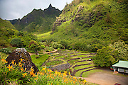 Limahuli Garden and Preserve, Haena, Kauai, Hawaii