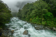 Oceania, New Zealand, Aotearoa, South Island, Te Anau, Southland, Fiordland National Park