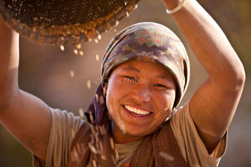 A young woman winnows wheat by whistling up the wind and tossing the grain into the breeze to separate the wheat from the chaff in the village of Dhakmar in the Mustang region of Nepal.